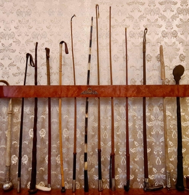 Whips collection with shelf
